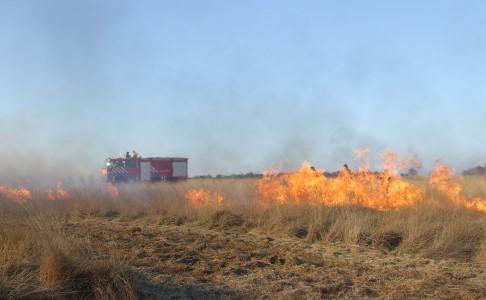 nso-natuurbrand-klein.jpg